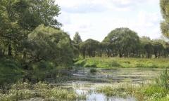 река Вязьма