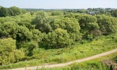 Фото реки Вязьма за Спасской башней