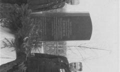 Братья генерала - Василий и Владимир Ефремовы на Екатерининском кладбище