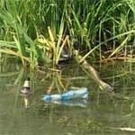 В Вязьме начинается очистка реки