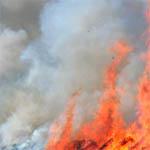 В Вязьме сгорел
