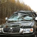 ДТП со смертельным исходом в деревне Черемушки