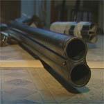 Полиция изъяла незаконное оружие в деревне Сосновка