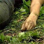 Возле деревни Вассынки найден труп женщины с разбитой головой