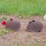 На Богородицком поле хоронили павших в Вяземском котле