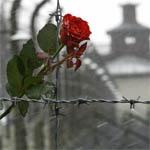 Монумент памяти жертв вяземского концлагеря все же откроют