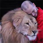 В Вязьме будут разводить львов