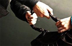 Полицией по горячим следам задержан грабитель