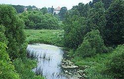 Река Вязьма оказалась самой грязной рекой смоленщины
