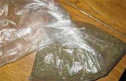 Задержан вязьмич с 3 килограммами марихуанны