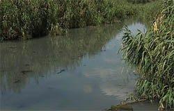 В Вязьме канализация течет прямо в реку