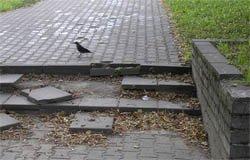 Тротуары и пандусы в Вязьме