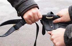 В Вязьме задержаны двое грабителей