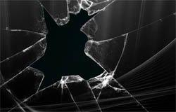Полиция Вязьмы задержала дачных воровок