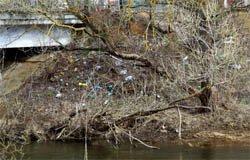 Добровольцы очистят берега реки Вязьмы от мусора
