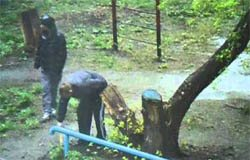 Полиция Вязьмы не реагирует на наркоманов по ул. Заслонова