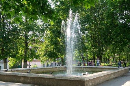 Нахимовский парк в Вязьме