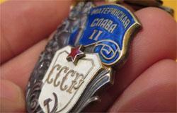 Татьяне Демидовой вручен орден «Материнская слава»
