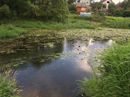 Река на Века