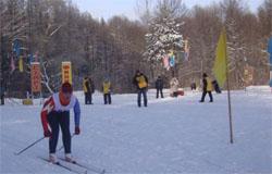 Вязьма заняла третье место в зимних спортивных играх
