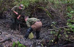 Военный самолет найден под Вязьмой