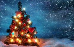 Когда в Вязьме зажгут новогоднюю елку?