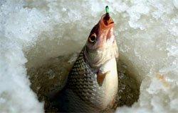 Рыбалка в Вязьме