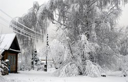 Несколько деревень вяземского района 4 дня без электричества