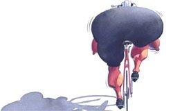 Вязьма «на работу на велосипеде»