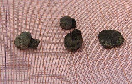 Новости археологических раскопок на Соборном холме