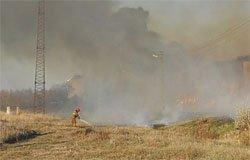 Вчера в Андрейково горел лен