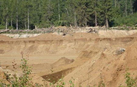 Устойчивое развитие сельских территорий в Вязьме