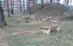 Молодежный парламент проводит субботник в парке МЖК