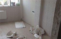Мошенник оставил жительницу Вязьмы без денег и ремонта