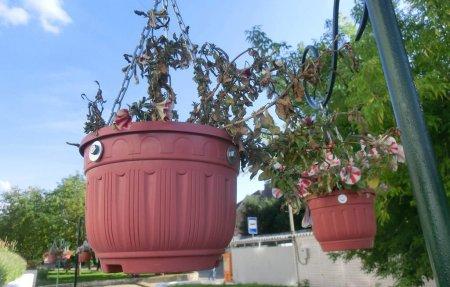 Вязьма город цветов и газонов