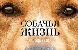 Киноклуб Пятница представляет: «Собачья жизнь»