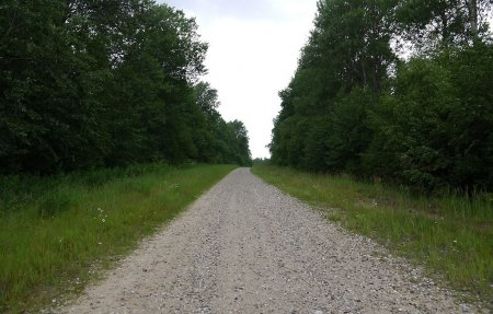 Старая Смоленская дорога