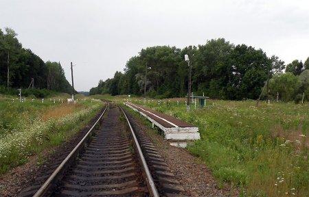 Новое село Вяземский район