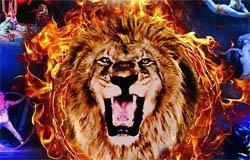 Цирк Вегас. Африканские львы в Вязьме 10 апреля