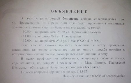 В Вязьме зарегистрирована бешеная собака