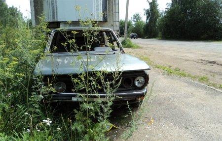 В Вязьме брошенные автомобили стали очагами несанкционированных свалок