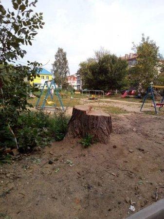 Праздник пяти дворов в Вязьме получил широкую известность в медийном пространстве
