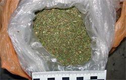 В одной из деревень Вяземского района полиция изъяла марихуану