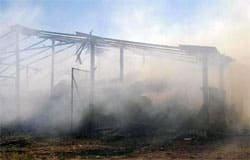 В Андрейково горела льнотреста