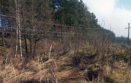Власти Вязьмы оказались не в состоянии найти собственника ЛЭП
