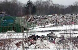 Зеленый патруль: полигон ТБО в Вяземском районе стал угрозой для экологии
