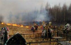 На Фроловском кладбище вандалы подожгли траву
