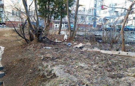 Чистота городских улиц под контролем