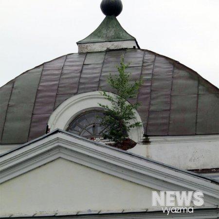 В Вязьме на памятнике федерального значения выросли деревья