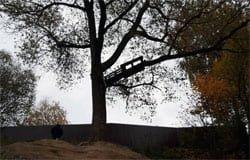 Опасная тарзанка: на Дмитровой горе пострадала девочка
